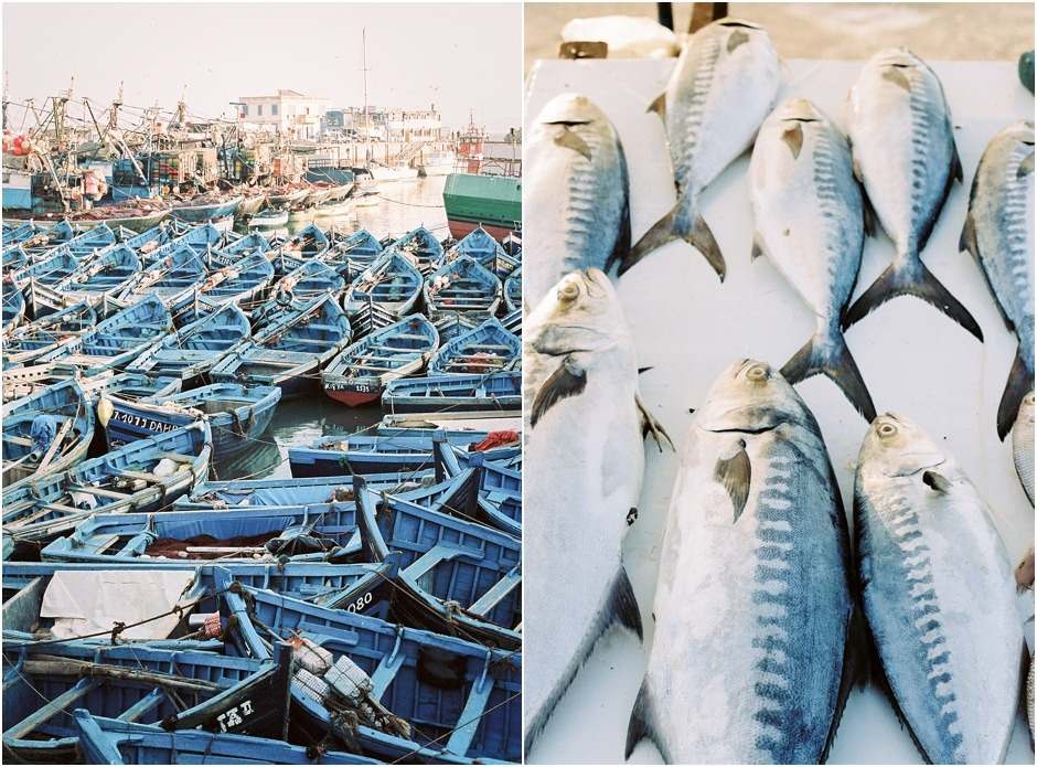 Diptych of the fishing port in Essaouira, of fish and blue fishing boats.