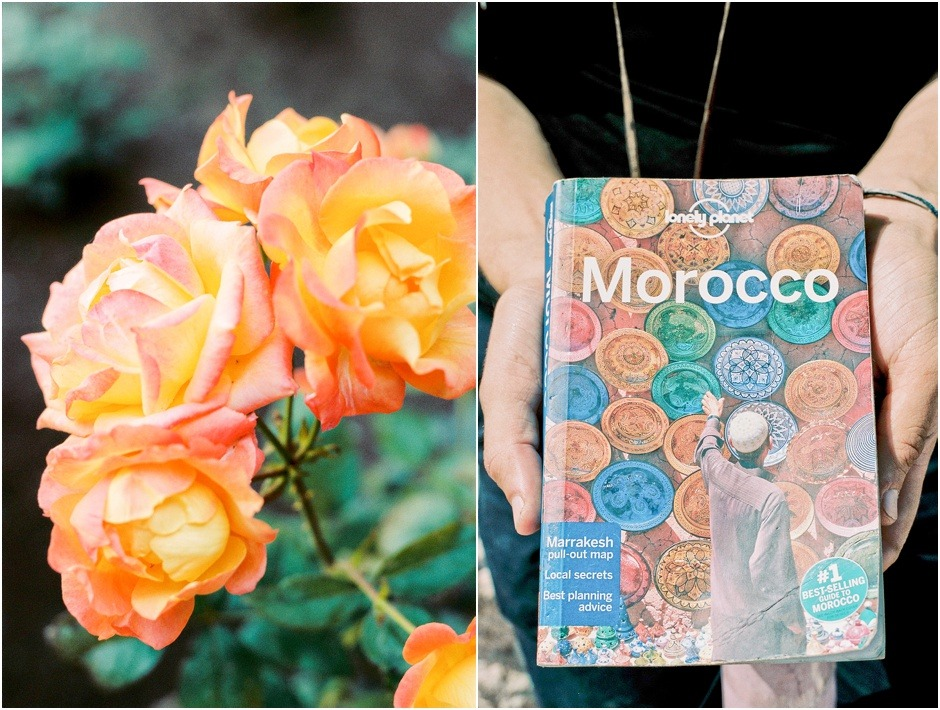 Diptych of Morocco Guide book and Peach Roses