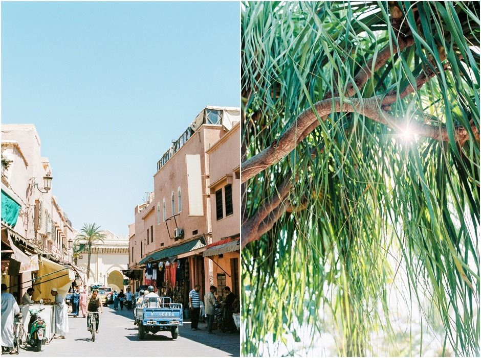 Diptych of the a street scene in Morooco and green tree