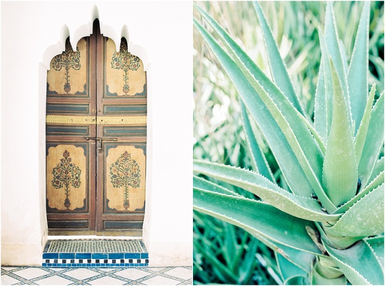 Diptych of Morocco detailed doorway and plant